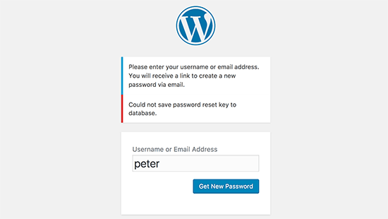 WORDPRESS密码重置键错误如何修复-WordPress安装教程