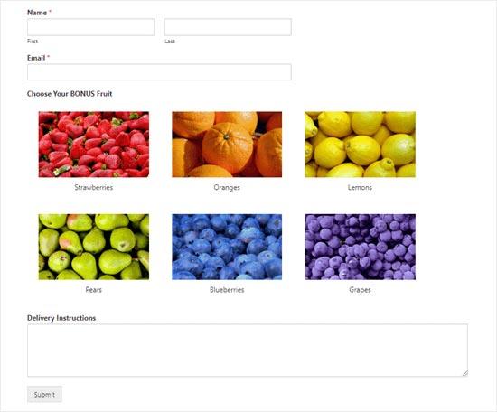 如何在WordPress表单中添加图像选择(增强参与度)-WordPress安装教程